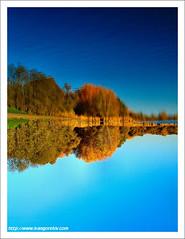 Autumn Fantasy / Ősz Fantázia (FuNS0f7) Tags: autumn abstract nature hungary budapest reflexions sonycybershotdscf828 digitalcameraclub naplástó