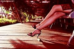 BlooDLine ~ (thedeadgeneral) Tags: asian asia legs perspective malaysia putrajaya merah kaki chineese rosepetal cheongsam amoi seksi tamanbotani thedeadgeneral