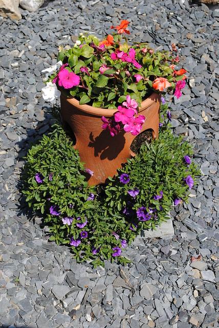 Flowers & Rocks