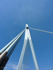 The Point (Jigsawn) Tags: above travel bridge blue shadow sky white holiday holland scale netherlands lines metal architecture composition rotterdam support triangle angle nederland august bluesky minimal clear cables below straight 2009 girder erasmusbrug towering theswan persepective