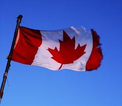 Canada Flag (Dcysiv Moment) Tags: ocean sun canada wind flag blow arctic worn mapleleaf weathered northwestterritories midnightsun tattered tuktoyuktuk