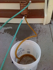 Collecting the cooled wort