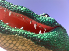 Blue Skies and Alley-Gators!