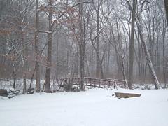 DSCF5126 (poodlegoiter) Tags: snow silverspring winterweather sligocreek