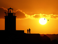 It takes two for a sunset tango! (Bn) Tags: seagulls lighthouse pier wintersunset noordzee northsea topf100 topf200 seaguls northseacanal wintersun ijmuiden wijkaanzee loveandromance velsen velsennoord noordzeekanaal noordpier 100faves noorzeekanaal 200faves coldtemperature romanticwalk ittakestwototango alemdagqualityonlyclub ijmuidennewcastle vuurtorenvanvelsen lighthouseofvelsen benbooster eenwinterzondag asundaywalktothepier eenwandelingopdepier suncolorfulwintersun