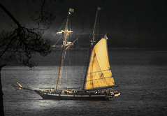 moonlit sail (axiepics) Tags: lake canada nature night sailboat dark landscape evening scenery sailing bc darkness britishcolumbia created vancouverisland moonlit sail northamerica moonlight sproatlake colorization selectivecolour panache selectedcolour ~panache~ copyrightalexskellyallrightsreserved