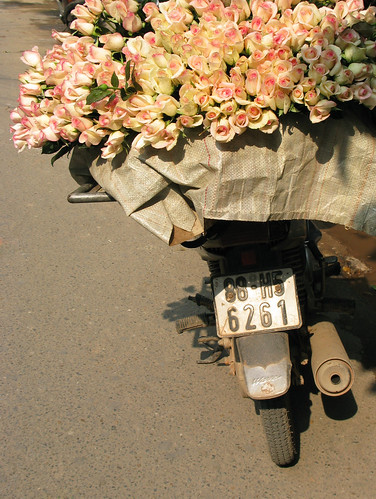 Pink flowers on a moto, Hanoi, Vietnam