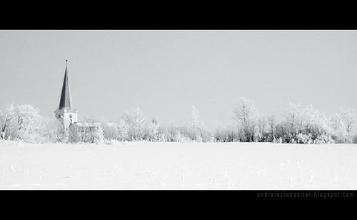 despre alb ca zapada (II)