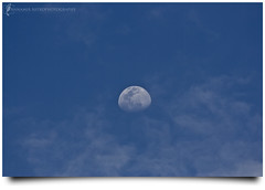 Untuk Orang-Orang Yang Berdosa * (AnNamir c[_]) Tags: moon canon 350d sigma luna 300mm astrophotography dq dosa bulan renungan kkb mukmin tazkirah rembulan annamir abadaniell puteracom dqkkb sahabatsejati getokubicom berdosa muktasyaf fotografikrcom digitalmukmincom  untukorangorangyangberdosa orangyangberdosa menzalimi ampunkan sangrembulan