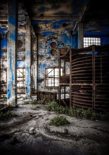 Blue inside #1