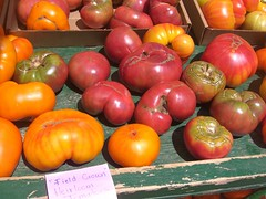 field-ripened tomatoes