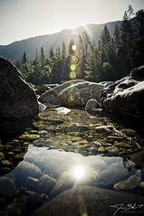 Morning over Tuolumne River (J.Bodas / Destroy Inc) Tags: 120 water forest sunrise river nationalparks tuolumne lumsden tuolumneriver 1n09 jessebodas lumsdenbridge