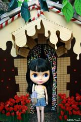 Robin y la casita de chocolate..