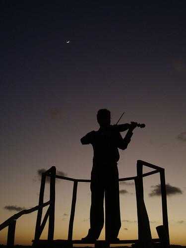 フリー画像| 人物写真| 男性ポートレイト| シルエット| バイオリニスト| バイオリン|      フリー素材|