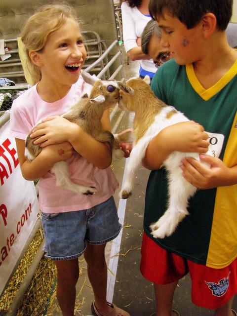 2009 TN State Fair #1