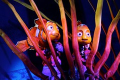 Finding Nemo: The Musical (Gretchasketch) Tags: nemo disney musical disneyworld waltdisneyworld dory marlin animalkingdom