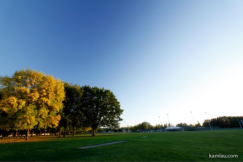 Minoru Park in Autumn by you.