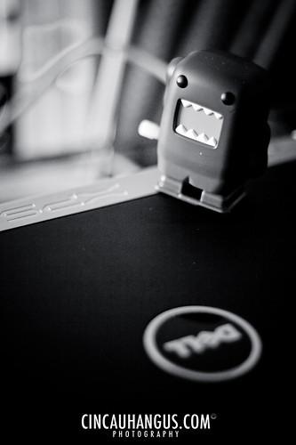 2° - Mini Domo-Kun 001 - IMG_5891.jpg