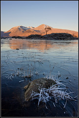Lochan na h'Achlaise (Ally Mac) Tags: uk sunlight mountain cold tree sunrise canon landscape dawn scotland highlands warm frost freezing scottish frosty lone icy 1022 cpl rannochmoor clearskies icedover lochannahachlaise 40d blakcmount