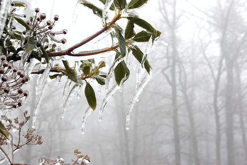 Ice Storm 02 (by RobDurfee)