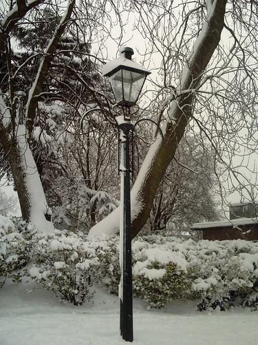 Narnia (Almost)