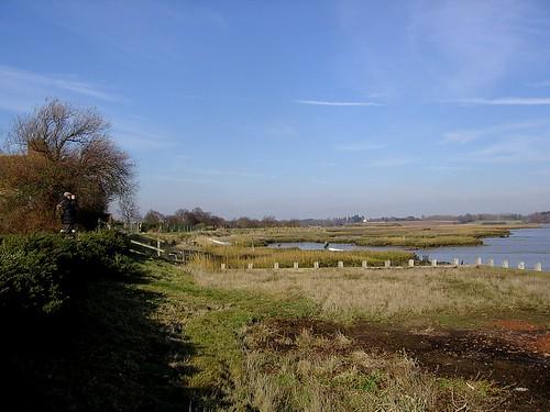 Birdwatching on Deben Estuary.