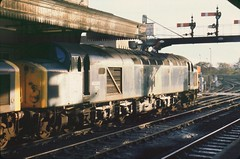 40s in dappled sunlight (SemmyTrailer) Tags: train central railway exeter 40 railtour ee stdavids class40