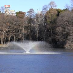 七井橋から