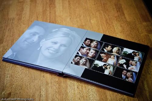 Sample Albums-2