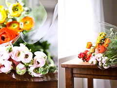 from the market (cannelle-vanille) Tags: color spring florida ranunculus
