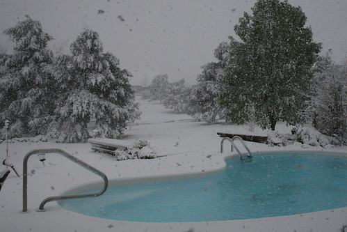 Snow on the pool