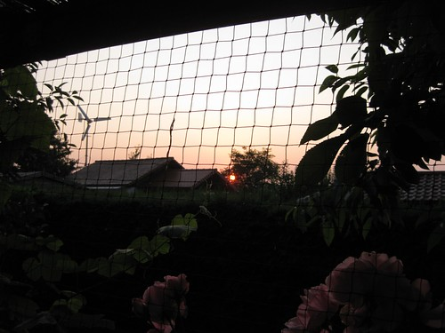 Günesin dogusu