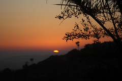(ashley rose,) Tags: sunset sky silhouette lens pier pretty view zoom branches july beaches fourthofjuly 4thofjuly sanclemente danapoint harbors 35105mm ashleyrose canonrebelxsi ashleyrosex