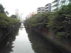 目黒川 - 自転車でお出かけ
