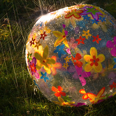 Sunset Backyard Beachball Rainshower (ecstaticist) Tags: family light sunset color green water grass rain vancouver canon square fun island shower angle rich columbia victoria hose filter sprinkler british splash sunshower beachball sprinkle rainshower g10 oplastic