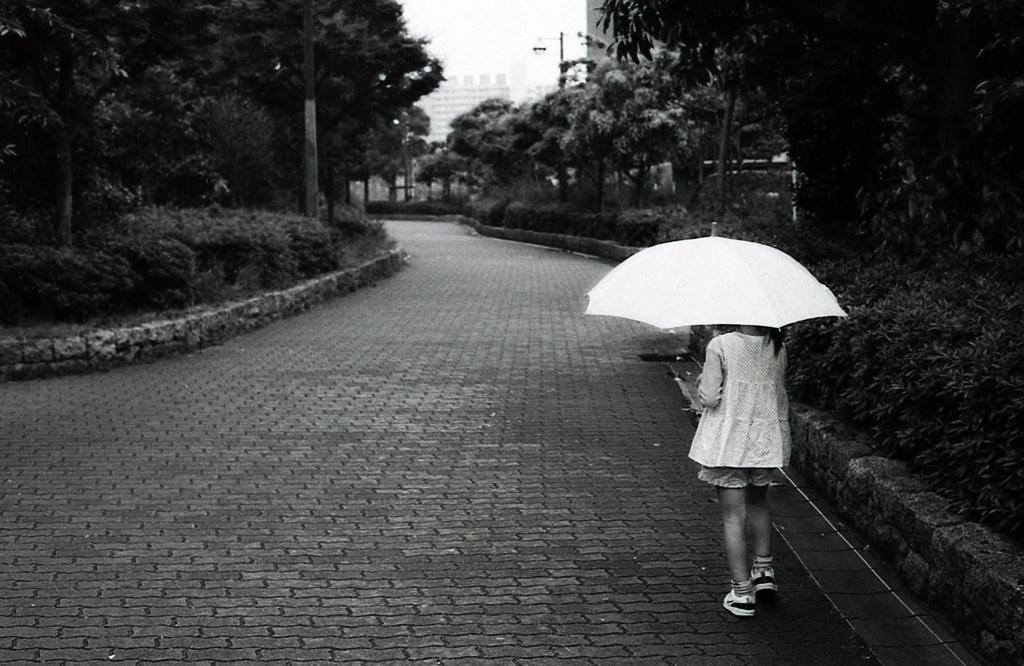 小雨、散歩。