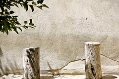 Nostalgia (hapal) Tags: wood shadow tree wall wooden branch iran seat crack iranian ایران درخت زنجان شاخه دیوار سایه چوب canoneos40d تنهایی دلتنگی چوبین hamidnajafi حمیدنجفی