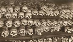 Ossuary in Hallstatt, Austria (pepandtim) Tags: 2001 trees pencil 1932 skulls austria salt brine ossuary bones pipeline census ebensee hallstatt beinhaus leoben maxmayer 33ha33