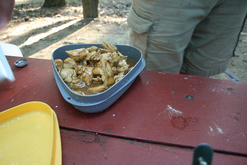 Chicken and Gravy with Mashed Potatoes While Camping