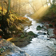 mountain stream (Yarm McD) Tags: landscapes stream yorkshire sunbeams interestinglandscape greatbritishlandscapes