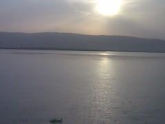 ADNAN TARIQ NATIVE CITY MIANWALI (SINDH RIVER) (ADNAN_BICHHOO) Tags: city river native sindh tariq adnan mianwali