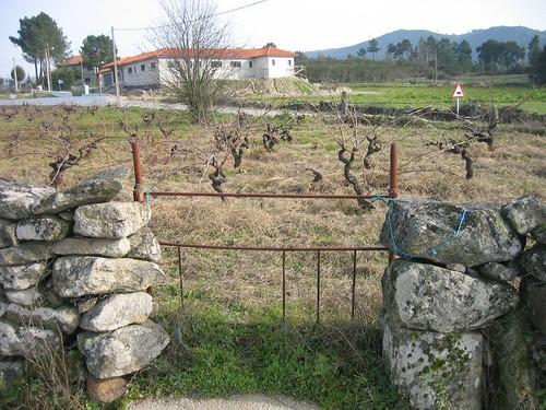 Vila Frade