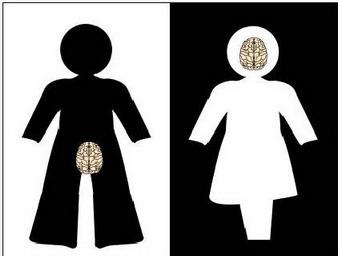 Hjärn