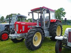 Treckertreffen Fintel 2009 (saltacornu) Tags: tractor vintage traktor super oldtimer 1250 trecker schlter saltacornu treckertreff fintel treckertreffen