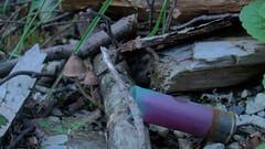 Mushrooms and Shells 2 (C. Pedersen) Tags: road pink beautiful 22 gun jay jamie sylvester shot christina columbia rifles rob mission guns shooting british 12 shotgun russian camoflage gauge rob2 1953 firearms sks remmington valancy sylveterroadmissionbritishcolumbiashootingsks12g22pink