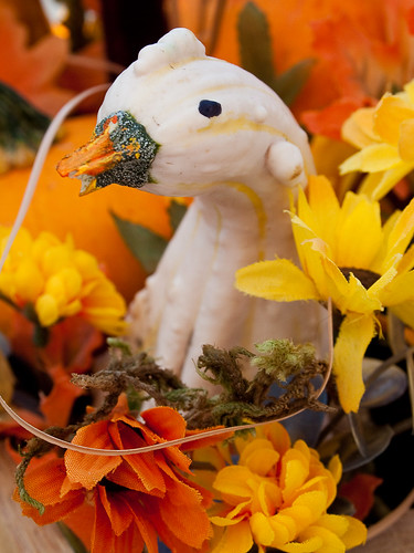 Duck Gourd by B.K. Dewey