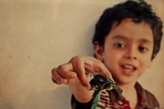 SAIF (irfan cheema...) Tags: pakistan boy portrait pet kid child shanghai turtle saif irfancheema familygetty2010