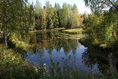 Water (Nicke_Karlsson) Tags: blue trees green water yellow sweden gras sverige vatten 1870mm gul träd blå grön gräs niklaskarlsson sonydslra200 norrbotte