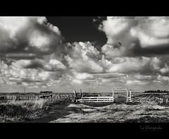 La Blanqueda (..  ..) Tags: trip viaje sky bw byn clouds landscape paisaje cielo nubes campo estancia tranquera enruta luduen