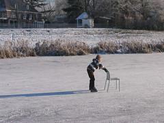IMG_2970 (EllenElemans) Tags: bosschebroek winters wintersfeer schaatsgymhbbcentrum